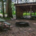 The primitive group campsite that accommodates up to 40 people.- Birch Bay State Park Campground