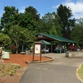 Rentable group picnic areas.- Main City Park