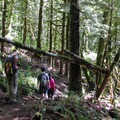 Hikers on the trail.- Heybrook Lookout