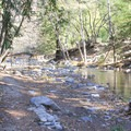 The trail to the gorge follows the banks of the Big Sur River.- Big Sur River Gorge