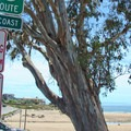 Parking can be a challenge at Twin Lakes State Beach.- Twin Lakes State Beach