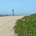 A view of the Seabright Beach Lighthouse from Twin Lakes State Beach.- Twin Lakes State Beach