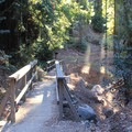 Pfeiffer Falls Trail.- Valley View + Pfeiffer Falls Trail Hike