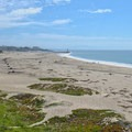 A mix of sand and beach vegetation at Seabright Beach.- Seabright Beach