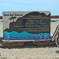 Dogs are allowed on Seabright Beach, just be sure to clean up after them.- Seabright Beach