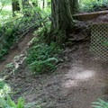 Trail features designed to prevent erosion.- Black Rock Mountain Bike Area
