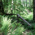 A steep trail feature at Black Rock Mountain Biking Area.- Black Rock Mountain Bike Area