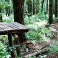 A launch platform at Black Rock Mountain Biking Area.- Black Rock Mountain Bike Area