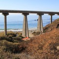 Half of Limekiln State Park Campground's sites are adjacent to the ocean underneath the Highway 1 bridge.- Limekiln State Park Campground