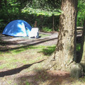A tent-site on the rear loop.- Bay View State Park Campground