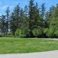 The grassy playfield at the center of the campground.- Bay View State Park Campground