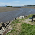 Big Indian Slough from one of several bench areas.- Padilla Bay Shore Trail