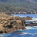 The South Shore Trail follows the rocky shoreline that explores the many coves and beaches in  Point Lobos.- Point Lobos State Natural Reserve