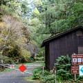 Fern Canyon Trailhead.- Fern Canyon Trail