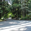 Camano Island State Park Campground entrance station.- Camano Island State Park Campground