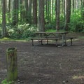 A standard tent site on the north loop.- Camano Island State Park Campground
