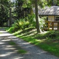 The forested cabin area.- Camano Island State Park Campground