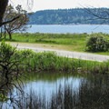 A view out to the Puget Sound from the Marsh Trail.- Camano Island State Park Loop Trails