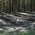 The group campsite picnic area.- Camano Island State Park