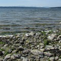 The Puget Sound from south beach.- Camano Island State Park