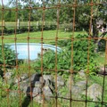 A goose pen in the farm animal area.- Hovander Homestead Park