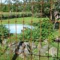 A goose pen in the farm animal area.- Hovander Homestead Park