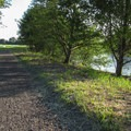 The Nooksack River along the River Dike Trail.- Hovander Homestead Park