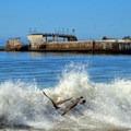 Seagulls dodge a wave near the SS Palo Alto.- Seacliff State Beach