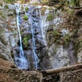 Pfeiffer Falls.- Valley View + Pfeiffer Falls Trail Hike