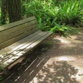A trailside bench.- Cross Island Trail