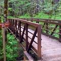 A footbridge leading to Alsea Falls.- Alsea Falls Recreation Area