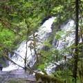 Green Peak Falls.- Alsea Falls Recreation Area