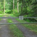 The Cranberry Lake trailhead lies 0.1 mile beyond the gate near the parking area.- Cranberry Lake