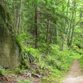 A trailside boulder along the traverse.- South Lost Lake Trail