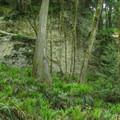 A cliff below Chukanut Ridge.- South Lost Lake Trail