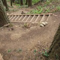 Steps descend from the ridge.- Rock Trail