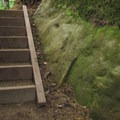 Boulders and steps are a common theme on the Rock Trail.- Rock Trail