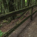 The first few switchbacks take you up to the Interurban Trail junction.- Fragrance Lake Trail