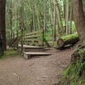 A bridge on the lake loop.- Fragrance Lake Trail