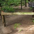Choose to make a loop back down to the Interurban Trail via Fragrance Lake Road.- Fragrance Lake Trail