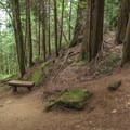 There are benches on several of the switchbacks.- Fragrance Lake Trail