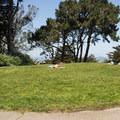 The summit knoll in Buena Vista Park.- Buena Vista Park