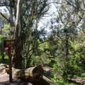 Buena Vista Park.- Buena Vista Park
