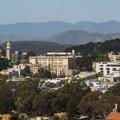 The Panhandle and NoPa neigborhood view from Buena Vista Park.- Buena Vista Park