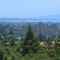 View of the Monterey Bay seen from the Ohlone Trail.- Pogonip Trails