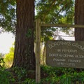 A memorium to the founder of Pogonip, Dorothy Deming Wilson.- Pogonip Trails