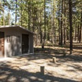 Vault toilet facility in Allingham Campground.- Allingham Campground