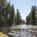 Metolius River in Smiling River Campground.- Smiling River Campground