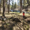 Metolius River Trail in Gorge Campground.- Gorge Campground