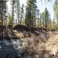 Metolius River in Gorge Campground.- Gorge Campground